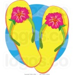 flip flops with Hibiscus flowers